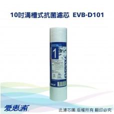 愛惠浦 10吋溝槽式抗菌濾芯 EVB-D101